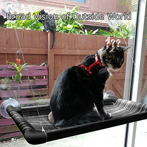 cat window perch   sturdy cat window hammock w  strong suction cup  u0026 stainless cable hold up to 50lbs window mounted cat bed  u0026 cat sunny seat   provides     cat window perch   sturdy cat window hammock w  strong suction cup      rh   woofmeowow