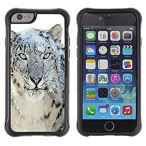 Suave TPU Caso Carcasa de Caucho Funda para Apple Iphone 6 / Snow Leopard Tiger Furry Winter Animal / STRONG