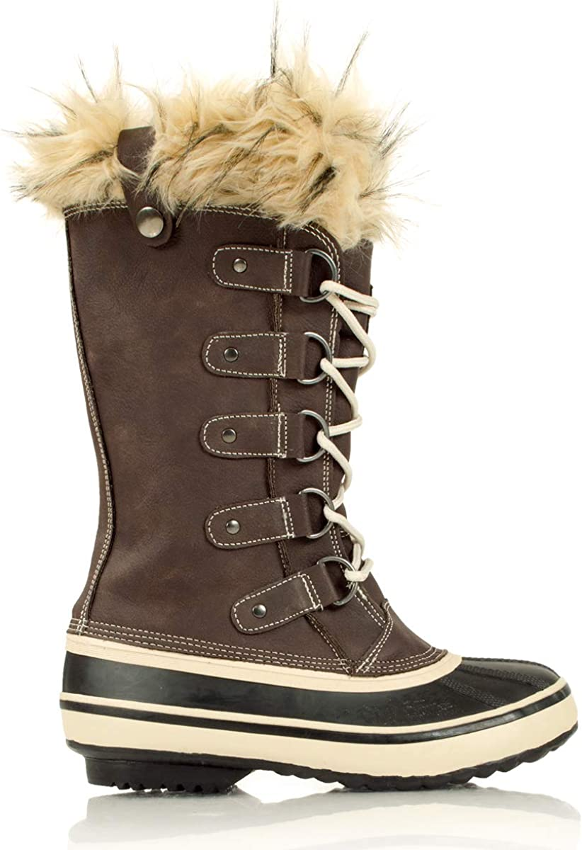Absolute Canada Women's Panorama 2 Boot, Brown