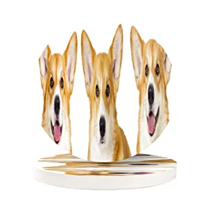 Cupholder Coaster for Your Car 2 Pack Cute Corgi Dog Fun Smile Puppy Cork Car Cup Holder Insert Coasters for Drinks Absorbent Women Men Girls Auto Wood Beverage Coasters Set Cool