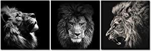 3 Panels Lion King Black and White Canvas Prints Wall Art Modern Painting Wall Pictures for Living Room Office Decoration (20X20 inch Lion)