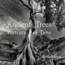 Ancient Trees: Portraits of Time