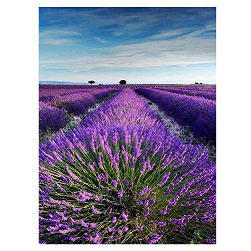 5D Diamond Mosaic Embroidery Lavender Painting Craft DIY Home Decor - 9