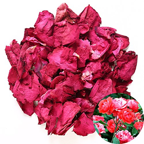 TooGet Dried Natural Real Red Rose Petals Organic Dried Flowers Wholesale Best for Wedding Party Decoration, Bath, Body Wash, Foot Wash, Tea, Baking, Potpourri, Crafting - 2 OZ