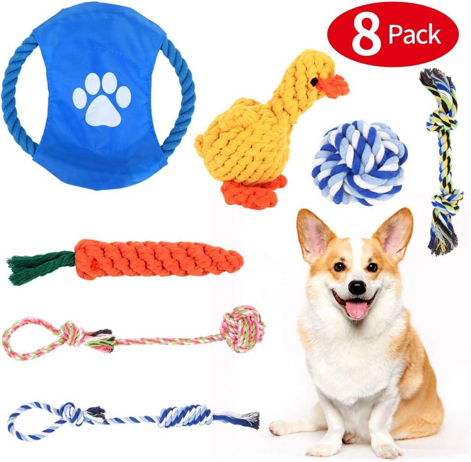 de Cuerda para Perros 7 Piezas de Algodón Cuerda Juguete para Cachorros Incluyendo Pelota de Cuerda, Juguete Interactivo Conjunto para Perros y Mascota, Cachorros y Perros de Pequeños a Medianos: Amazon.es: Productos