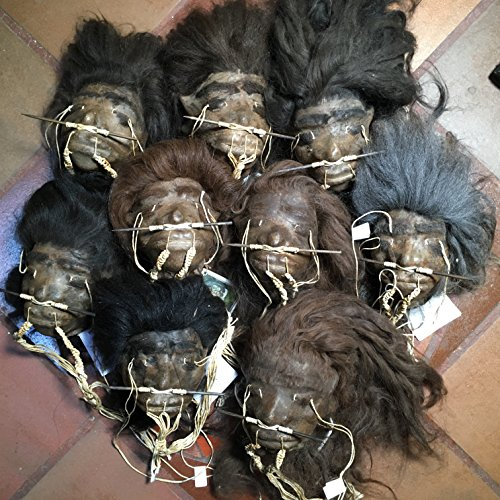 Daprofe Shrunken Head for Sale One(1) 5 Inch Dark Haired Shrunken Head No Facial Hair Similar to Those Shown in Photo]()