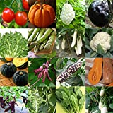 Seeds Package: 20 Seeds : Survival Garden Vegetable Fruit Seeds Non-GMO/Hybrid Organic Seeds Hot