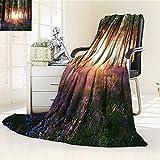 AmaPark Custom Design Cozy Flannel Blanket Stunning Bluebell Woods Sunrise with White Rabbit Sunny Custom Design Cozy Flannel Blanket