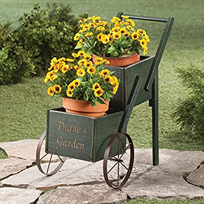 Fox Valley Traders Personalized 2-Tier Garden Trolley Cart with Custom Name, Rustic Multi-Use Plant Holder Décor, Green : Garden & Outdoor