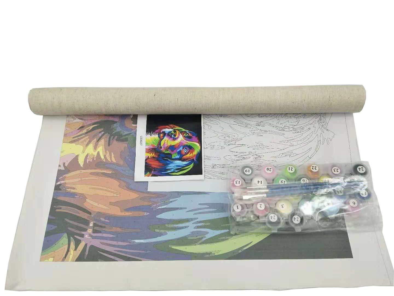 20 Pulgadas con Marco DIY Pintura al /óleo Dibujo Gato de reflexi/ón Lona Colorida con cepillos Decoraci/ón Decoraciones Regalos Pinte por Number Kit 16