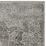 Cheap Safavieh Vintage Premium Collection VTG158-770 Transitional Oriental Medallion Grey and Multi Distressed Silky Viscose Area Rug (2′ x 3′)