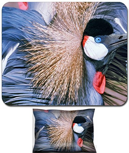 301 Crane - Luxlady Mouse Wrist Rest and Small Mousepad Set, 2pc Wrist Support design African Grey Crowned Crane Balearica regulorum IMAGE: 5606775