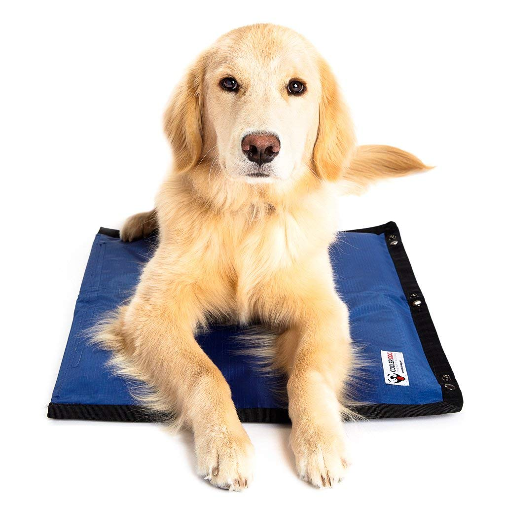 CoolerDog Dog Cooling Pad Dog Cooling Products Hydro Cooling Mat for Small/Medium Dogs by CoolerDog