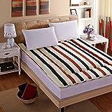 DHWJ Tatami mattress Single double bed mat Folding student dormitory mattress-E 150x200cm(59x79inch)