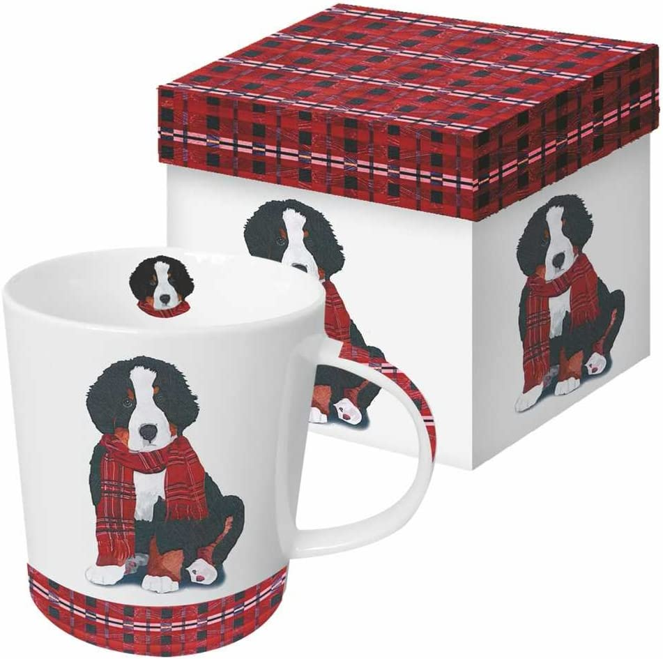 Paperproducts Design Decorative Bone China Mug Gift Box Set - Beverages, Hot, Cold Drinks, Tea – Artistic Designs, Decorated Mugs – 13.5 Ounces, Patti Gay/Two Can Art Noah Design