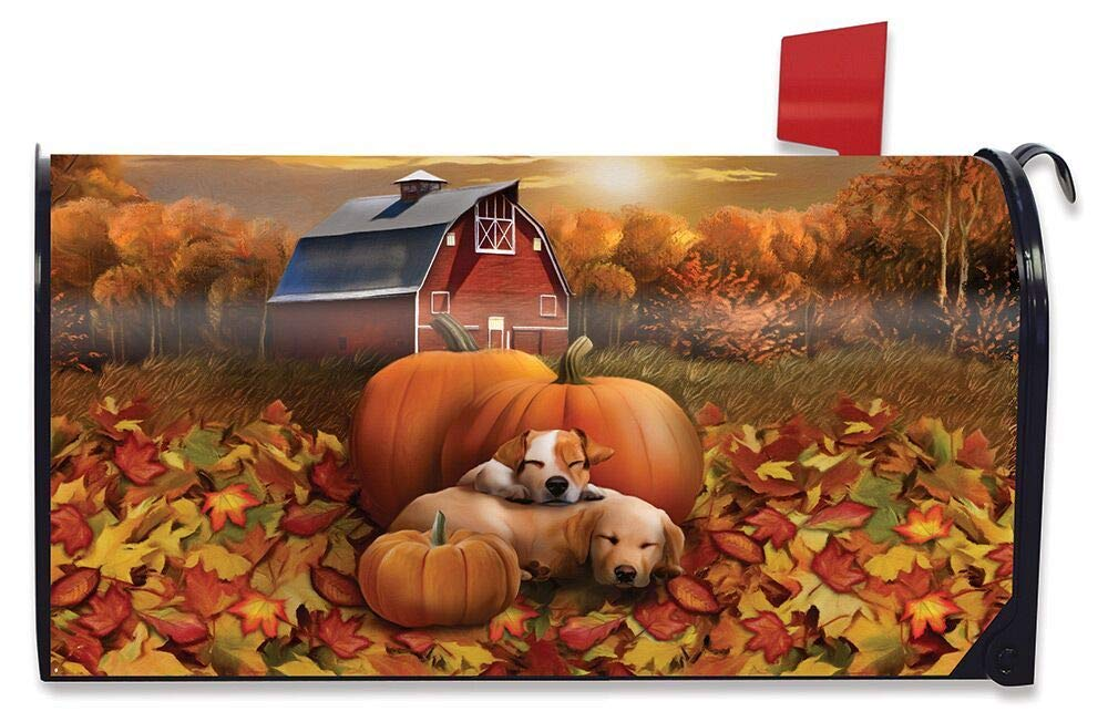 Briarwood Lane Welcome Fall Puppies Magnetic Mailbox Cover Pumpkin Barn Autumn Standard