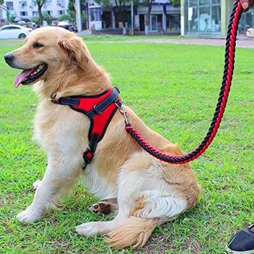 Correa para mascotas Correa Arnés de pecho para mascotas Cuerda ...