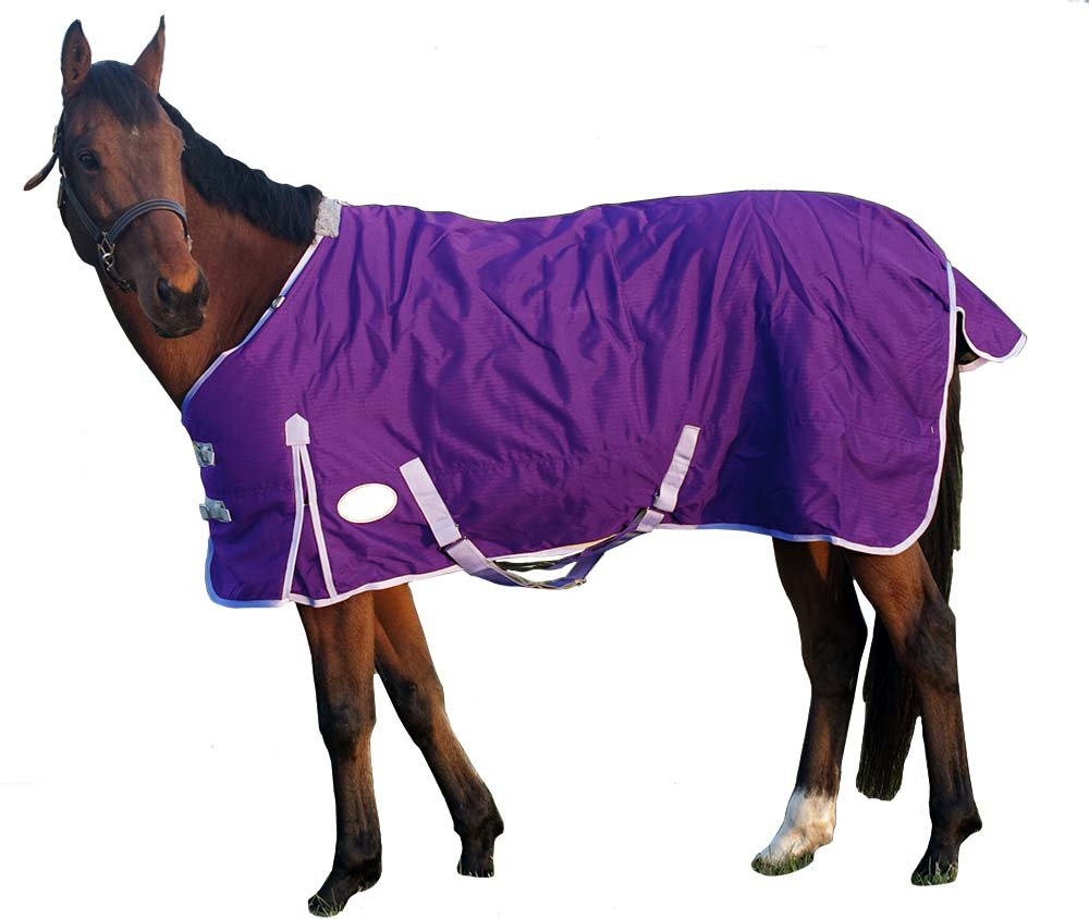 Derby Originals 600D Deluxe Turnout Winter Blanket Waterproof,  Insulated, Lined & Breathable Full Horse Sizes, Purple, 72''