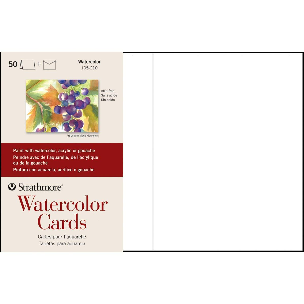 Strathmore (105-650 Watercolor Cards Full Size Cold Press, 100 Envelopes by Strathmore