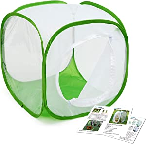 Insect and Butterfly Habitat Cage Terrarium Pop-up 12 X 12 X 12 Inches, Polyester Bottom for Easier Clean