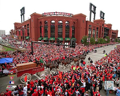 Busch Stadium St. Louis Cardinals 2011 World Series Parade MLB Photo (Size: 8