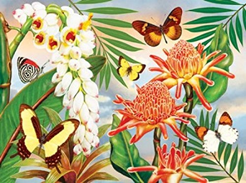 OKSLO Rosiland Solomon Stretched Canvas Art - Butterflies With Torch Ginger - Small 12