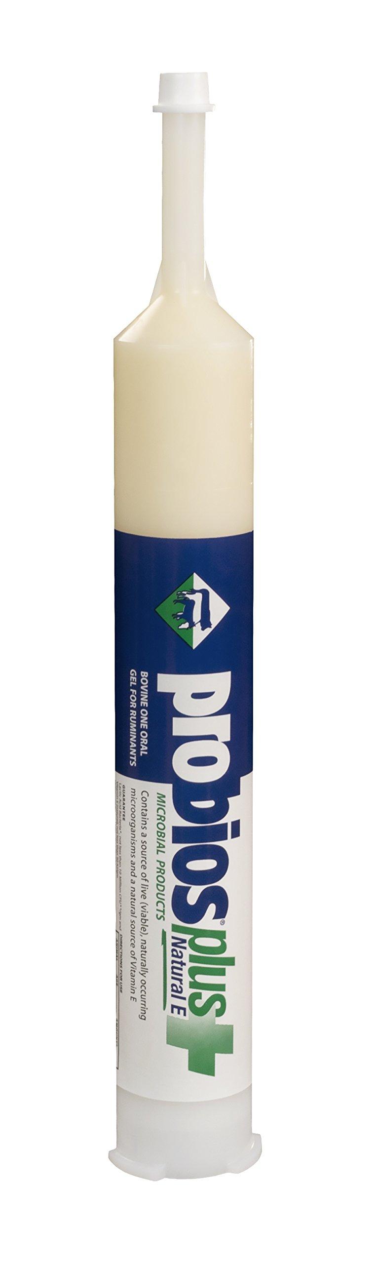 Probios Bovine One Oral Gel for Ruminants Plus Natural-E Tube, 300cc