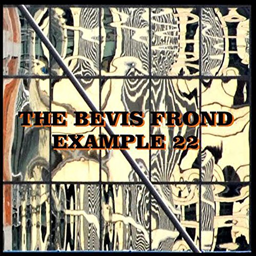BEVIS FROND - EXAMPLE 22