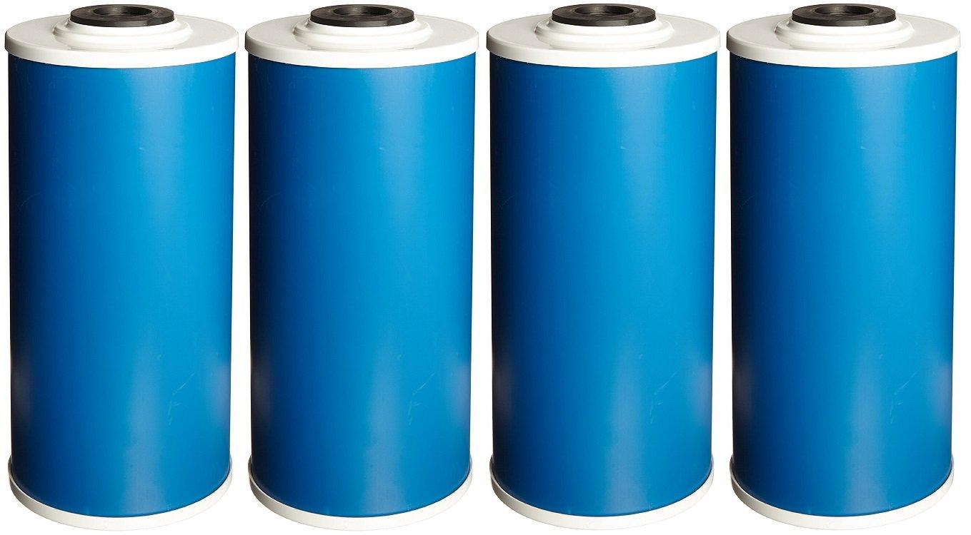Pentek DBC-10EX2 Bacteriostatic KDF/GAC Filter (10'' x 4.5'') (Pack of 4)