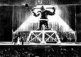 King Kong Bruce Cabot Fay Wray Robert Armstrong King Kong 1933 Photo Print (14 x 11)