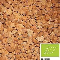 semillas de albaricoque amargos 1kg orgánicos, seleccionados a