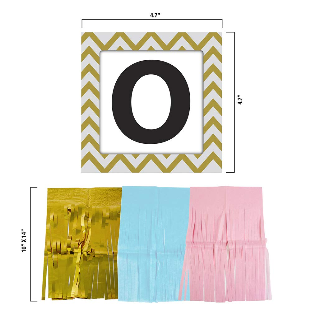 Gender Reveal Party Supplies (75 Pieces) with Photo Props, 36 Inch Reveal Balloon and Sash - Premium Baby Shower Decorations Set - Confetti Balloons, Boy or Girl Banner, Paper Lanterns and Pom Poms by FutureSquared (Image #3)