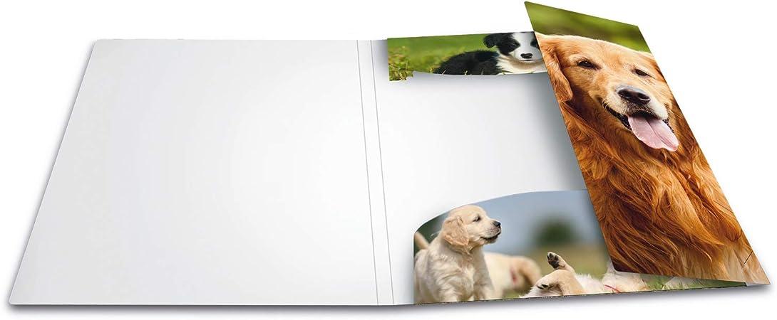 HERMA 7144 Sammelmappe DIN A3 Kunststoff Tiere Hunde Zeichenmappe Gummizugmappe