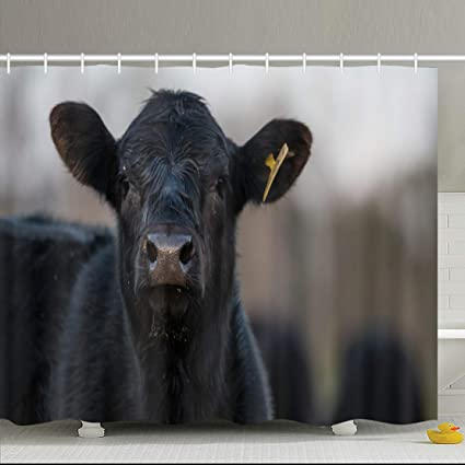 Black beef curtains
