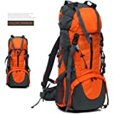 WINNING 50L(45L+5L) Hiking Backpack, Outdoor Sport Daypacks Waterproof Hydration Bag for Climbing Camping Fishing Travel Cycling Skiing Riding with Rain Cover Easy Carry- ORANGE