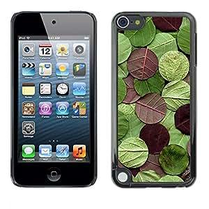 Pulsar Snap-on Series Teléfono Carcasa Funda Case Caso para Apple iPod Touch 5 , Rotonda Modello Natura Verde Marrone