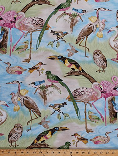 Cotton Bird Species Breeds Owl Flamingo Parrot Bluebird Swan Duck Sparrow Nuthatch Nature Wildlife Tropical Birds of a Feather Cotton Fabric Print by the Yard (120-6801)