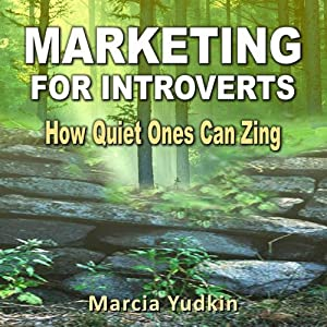 Marketing for Introverts Audiobook