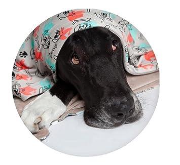 Utex - Manta para mascota de felpa y microfibra cálida y suave. Manta para sofá