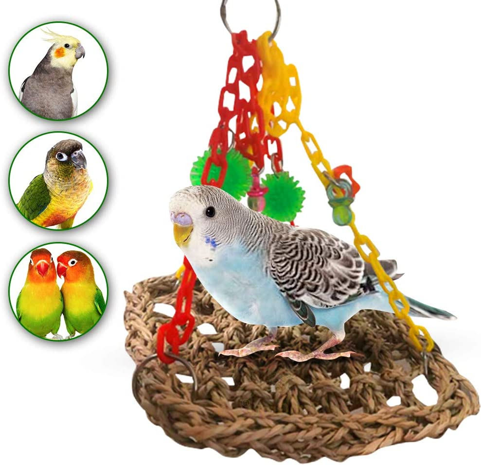 Best foraging toys for Budgies from Amazon