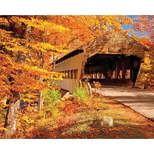 Springbok Puzzles - Autumn Covered Bridge - 1000 Piece Jigsaw Puzzle - Large 24 Inches by 30 Inches Puzzle