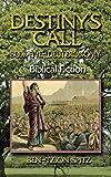 Destiny's Call: Book Five - Deuteronomy: Biblical Fiction (Volume 5)