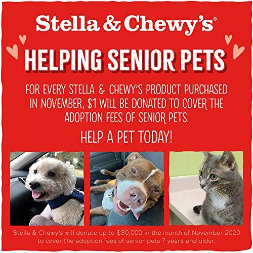 Stella & Chewy's Freeze-Dried Raw Carnivore Crunch Cage-Free Turkey Recipe Dog Treats, 3.25 oz bag