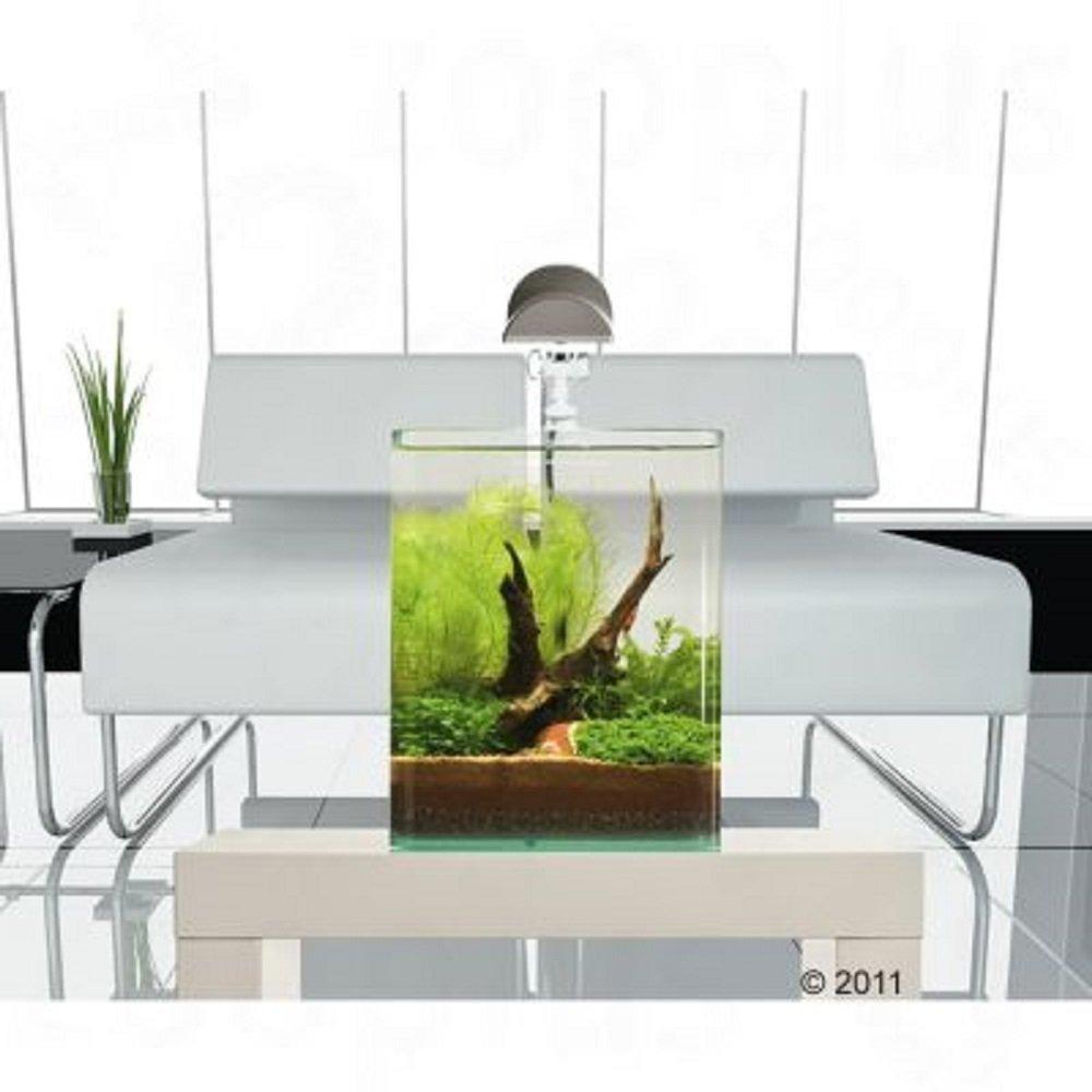 Nano Cube Set Completo de acuario 30 L Plantas de peces tropicales: Amazon.es: Productos para mascotas