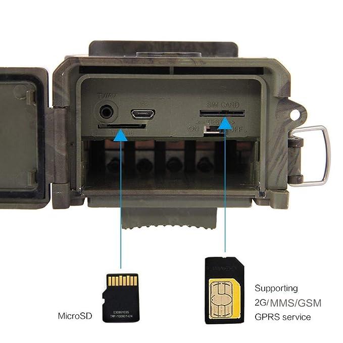 zhengyao - Cámara de Caza HD HC-350M para cámara de Fotos, visión Nocturna, cámara de Caza por Infrarrojos: Amazon.es: Deportes y aire libre