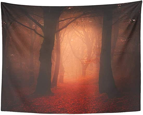 Emvency Wall Tapestry Brown Romance Dark Autumnal Forest in Foggy Day for Book and Music Albums Orange Alley Fall Fantasy Goth Gothic Park Decor Wall Hanging Picnic Bedsheet Blanket 80×60 Inches