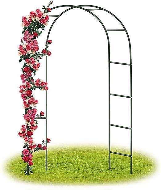 Arcos de rosas trepadoras, decoración de jardín,Black: Amazon.es ...