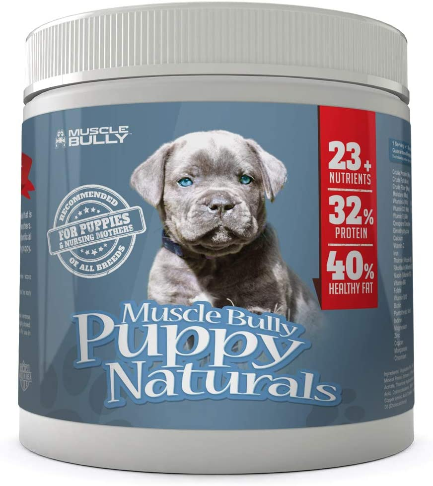 Muscle Bully Puppy Natural