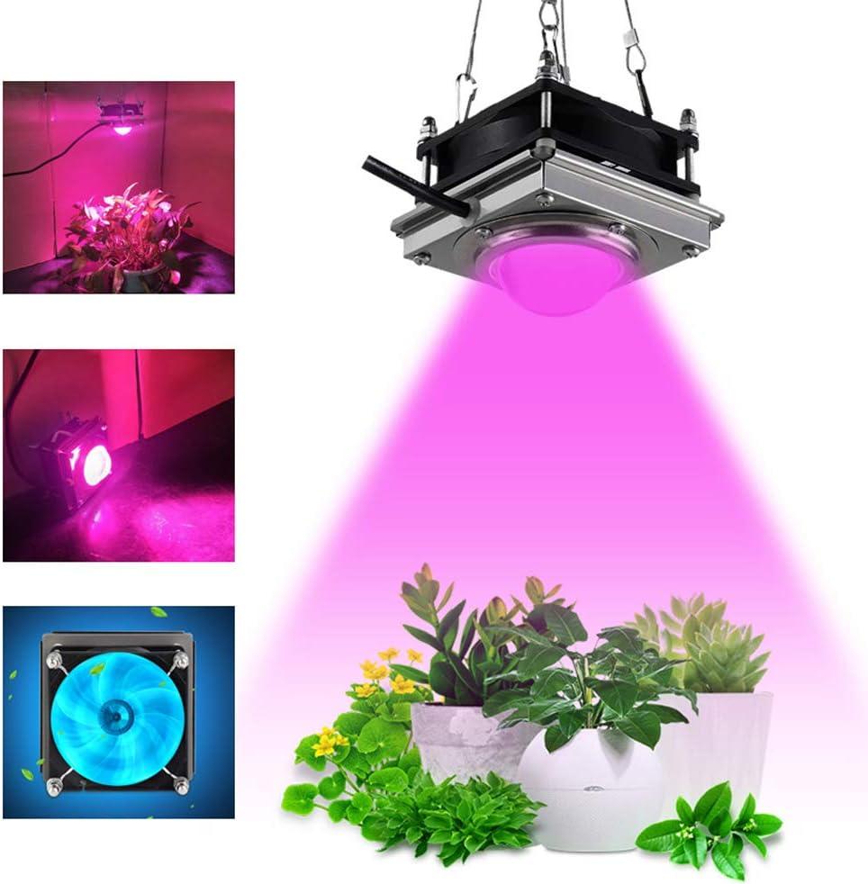 Planta crece la luz, la luz de espectro completo de la planta para las plantas de interior hidropónicos verduras y flores, para las plantas de interior, Semilla de partida, la planta de semillero