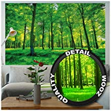 Poster – Summer Trees – Picture Decoration Nature Landscape Forest Glade Sunbeams Plants Flora Ferns Relaxation Sapling Spa Image Photo Decor Wall Mural (55x39.4in - 140x100cm)